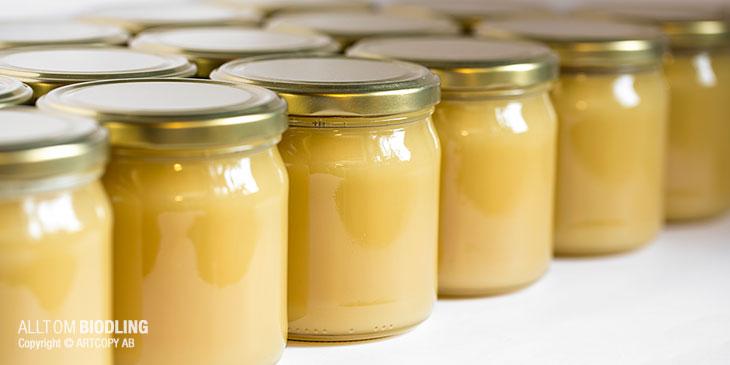 Hållbarhet och förvaring av honung