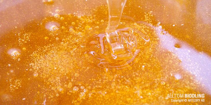 Naringsinformation för honung