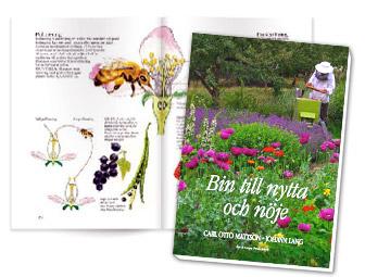 Bin till nytta och nöje - kurs- och inspirationsbok om bin och biodling