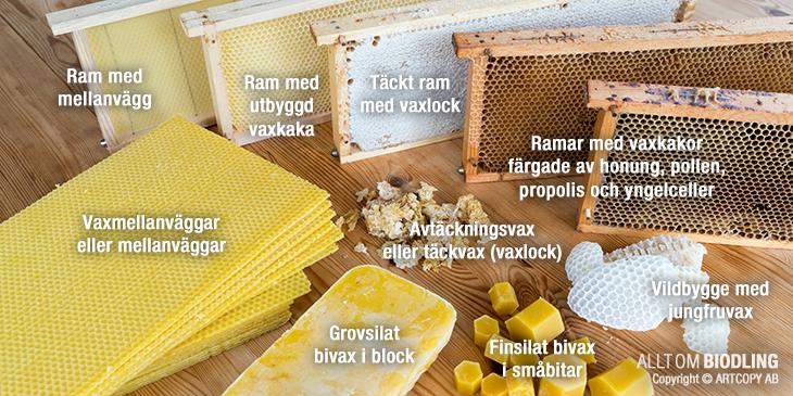 Bivax - Vaxkaka - Mellanvägg - Avtäckningsvax