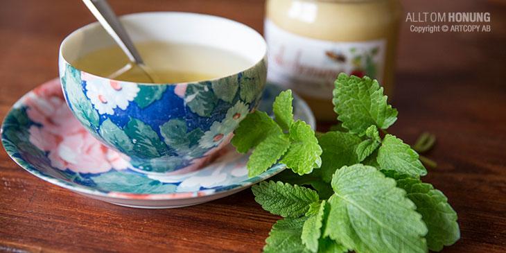Te på citronmeliss med honung