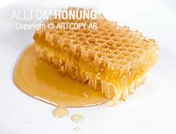 Kakhonung – honung i vaxkaka